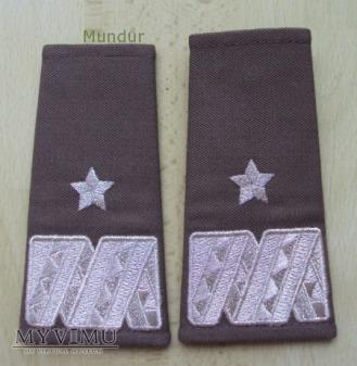 Pochewki z oznaką stopnia - generał brygady SG