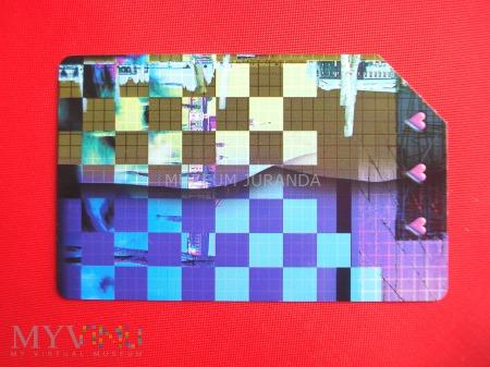 Karta magnetyczna 804