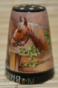 Naparstek -miniatura obrazu «Stajnia»