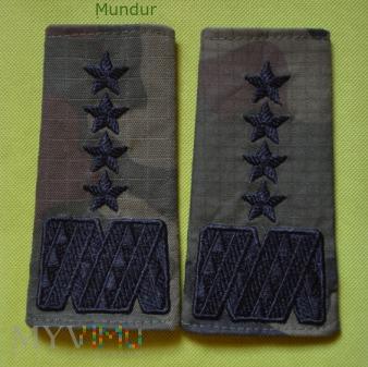 Pochewki z oznakami stopnia wz.2010 - generał