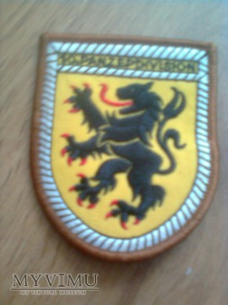 Naszywka 10 Dywizji Pancernej (niemiecka)