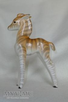 Zebra Łomonosow 2