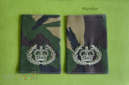 Wieka Brytania-oznaka stopnia: warrant officer 2rd
