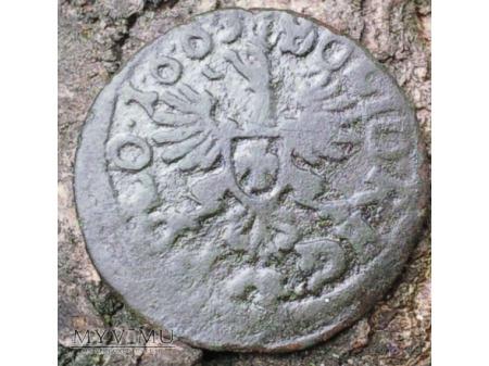 szeląg koronny 1663 19