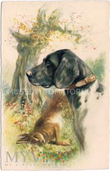 Duże zdjęcie Pies - martwy zając