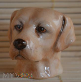 Naparstek -Labrador