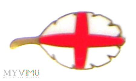 odznaka listek - Anglia