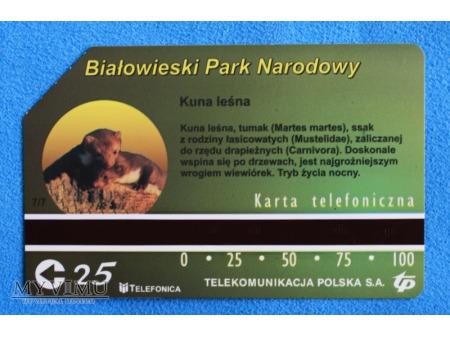 Białowieski Park Narodowy 7 (7)
