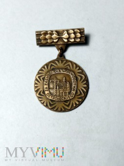 Odznaka za zasługi dla wojewódzctwa ostrołęckiego
