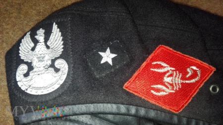 Choroąży 5 Brygady Pancernej Skorpion 10 DZ