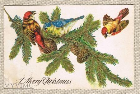 Wesołych Świąt ptaszki szyszki gałązka świerkowa