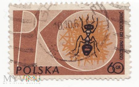 Znaczek pocztowy -Zwierzęta 34