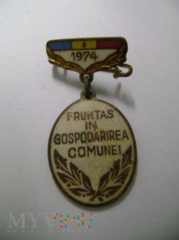 odznaka rumuńska