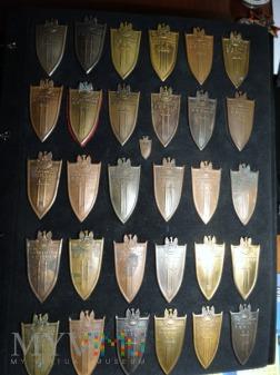 Moja pierwsza 30-tka Odznaki Grunwaldzkiej