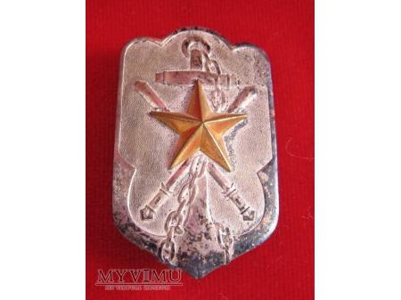 Japońska - ogólnowojskowa odznaka wetarana.
