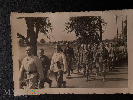 W marszu - gdzie i kiedy ? Żołnierze niemieccy.