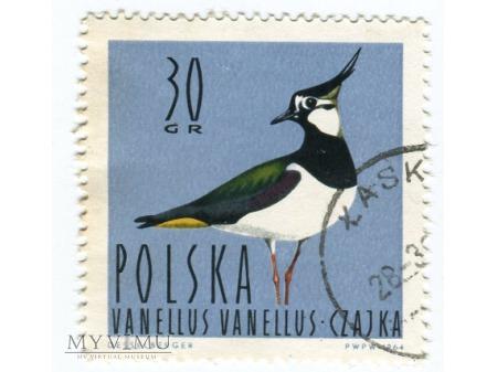 1964 Czajka Ptak znaczek Vanellus Vanellus Polska
