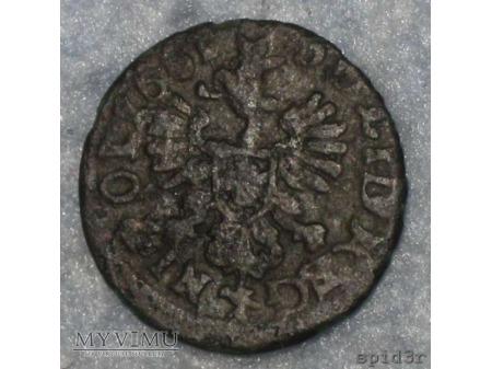 szeląg koronny 1661 3
