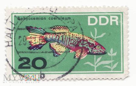 Znaczek pocztowy -Zwierzęta 35