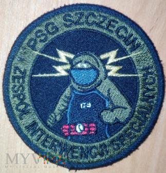 Zespół Interwencji Specjalnych - Placówka SG