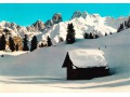 Dolomiti - Monte Cristallo m. 3199 – Versante