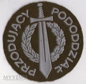 Emblemat PRZODUJĄCY PODODDZIAŁ wojsk lądowych