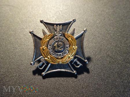 12 Pułk Zmechanizowany - Gorzów ; Nr:171