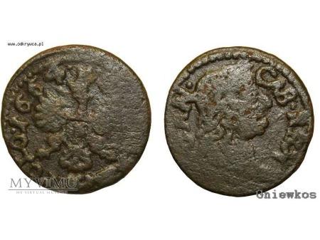 szeląg koronny 1664 7