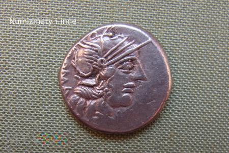 Duże zdjęcie denar Republiki Rzymskiej