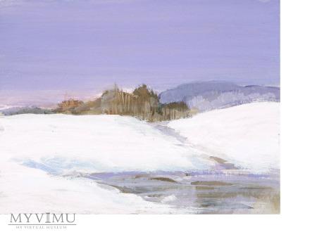 Miniatura - Zimowe pola