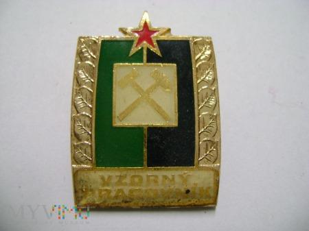 odznaka wzorowy pracownik
