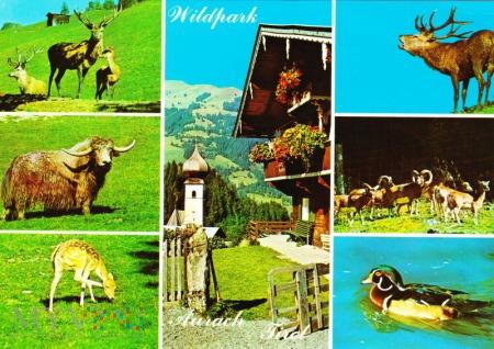 Wildpark Tirol