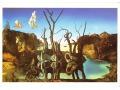 Cygnes Reflétant des Éléphants