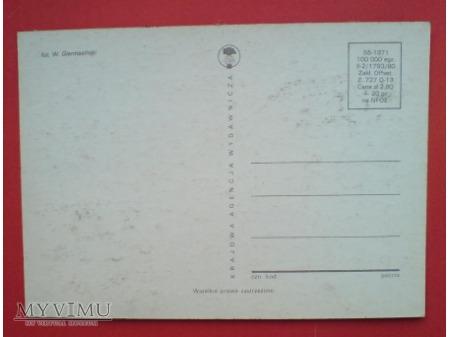 Duże zdjęcie 1980 Kot europejski karta Maximum Maksimum