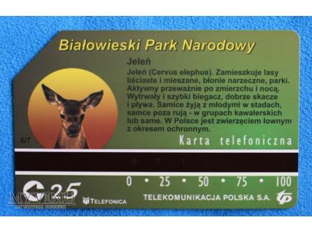 Białowieski Park Narodowy 6 (7)