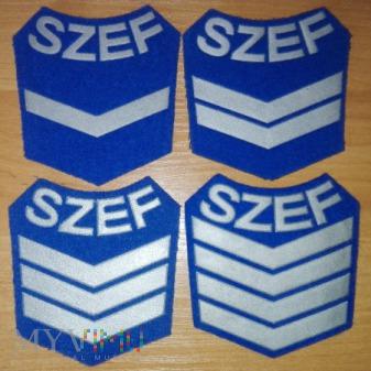 Szef kompanii wojsk lotniczych 4 klasy