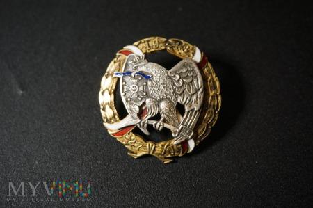 Kopia odznaki 15 Pułku Ułanów Wielkopol. Nr:123