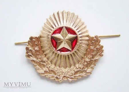 Duże zdjęcie Odznaka białoruskich wojsk lądowych.