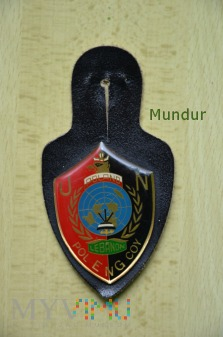 Odznaka sapera POL ENG COY z Libanu
