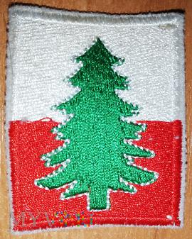 22 Karpacka Brygada Piechoty Górskiej