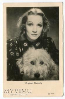Marlene Dietrich pies Piękne Oczy dog postcard
