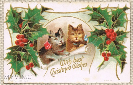 Wesołych Świąt dwa kotki ostrokrzew