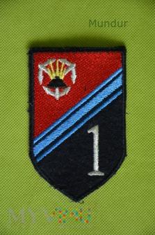 Oznaka 1.Brzeski Pułk Saperów