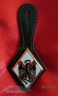 odznaka 1RE (1er Régiment étranger)