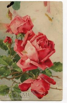 Catharina C. Klein piękne róże kwiaty Flowers