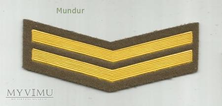 Oznaka lat służby - 2 rok