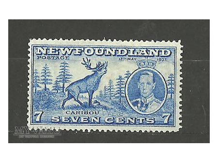 Newfoundland stamp