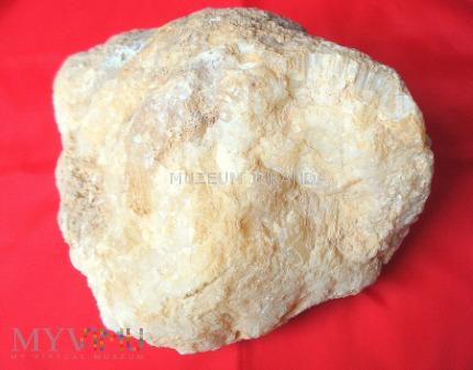 Duże zdjęcie Bryła kalcytu
