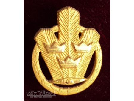 Odznaka Orienterigsmärke