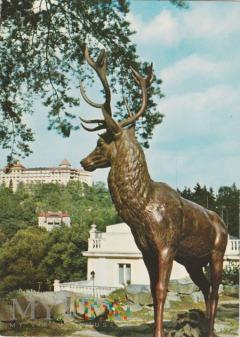 Duże zdjęcie Karlovy Vary